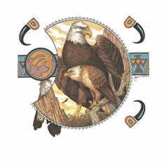 Nature Animal wild Eagle american indian design shirt t-shirt