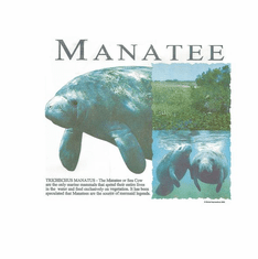 Nature Animal wild manatee shirt t-shirt