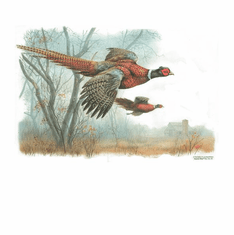 Nature Animal wild pheasants shirt t-shirt