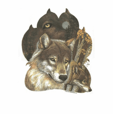 Nature Animal wild wolf owl shirt t-shirt