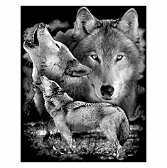 Nature Animal wild wolves wolf shirt t-shirt