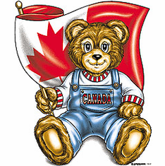 novelty Canadian patriotic shirt Canada teddy bear