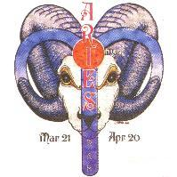 novelty shirt ARIES horoscope new age