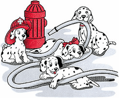 Novelty shirt DALMATION dog dogs puppy puppies firefighter fireman fire department
