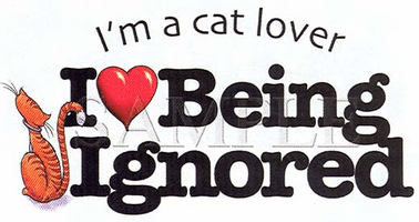 Novelty shirt I'm a cat lover I love being ignored kitten