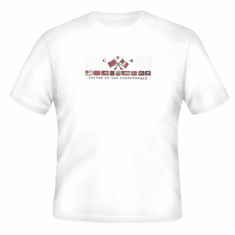 novelty T-shirt CSA colors of confederacy Dixie southern south confederate