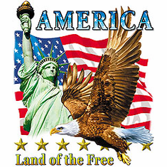 Patriotic America Land of the Free American Flag Eagle shirt