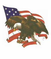 Patriotic American Flag Eagle shirt