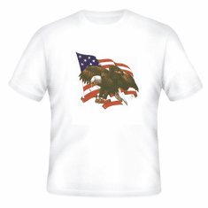 Patriotic American Flag Eagle t-shirt shirt