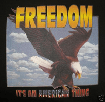 Patriotic eagle Freedom it's an American thing shirt