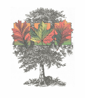 Seasonal Autumn fall tree shirt