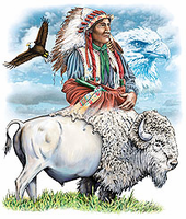 western american indian, bald eagle, buffalo shirt