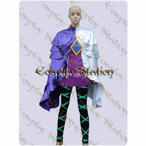 The Legend of Zelda Skyward Sword Fi Cosplay Costume