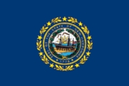 New Hampshire State Flag 3x5