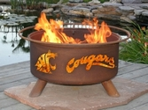 Washington State Outdoor Fire Pit