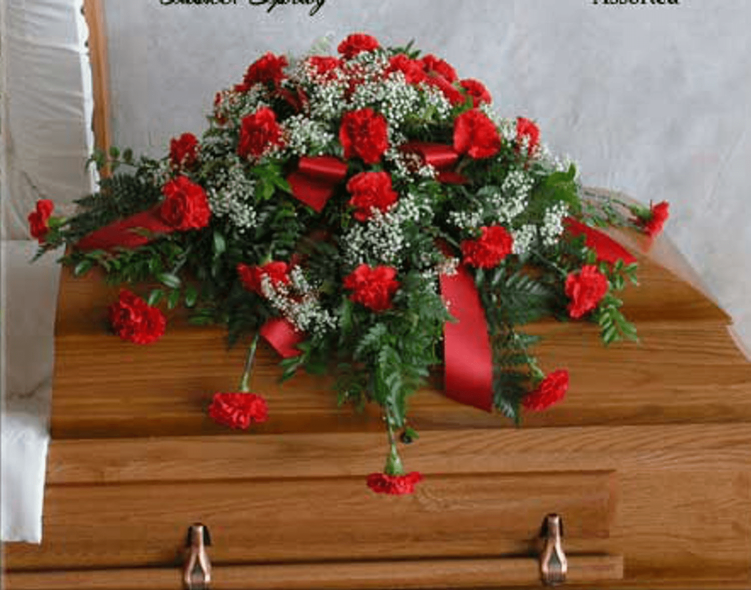 Glorious Carnations Casket Spray