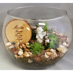 Succulent Enchanted Garden in Bubble Bowl