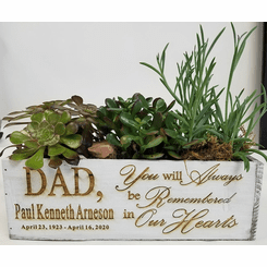 Succulents in Engraved Personalized  Garden Box