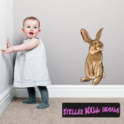Easter Bunny Wall Decal - Wall Fabric - Repositionable Decal - Vinyl Car Sticker - usc002