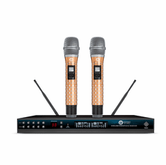 Singtronic UHF-1000Pro Professional 300 Channels Dual Wireless Microphone Karaoke System Newest Model: 2020 Diamond Series