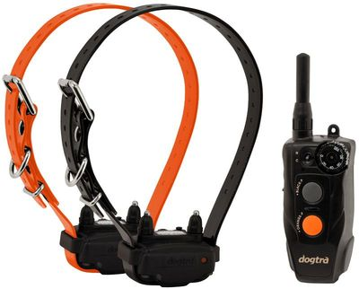 Dogtra 202C Compact Trainer 2-Dog
