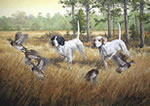 English Pointer: Double Trouble - giclee