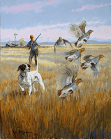 English Pointer: Evening Huns - original oil