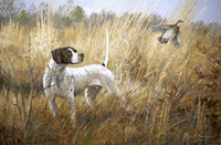 English Pointer: The Single - giclee