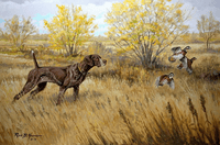 German Shorthaired Pointer: Class Act - giclee