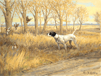 English Pointer and quail: Kansas Gold � giclee