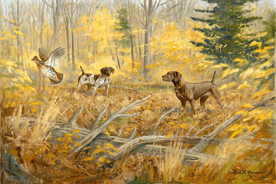 German Shorthaired Pointer: Doubled Down - giclee on paper