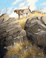 German Shorthaired Pointer: Precarius Point - giclee on paper