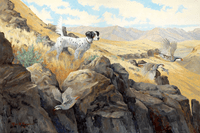Setter: Into Thin Air - original oil