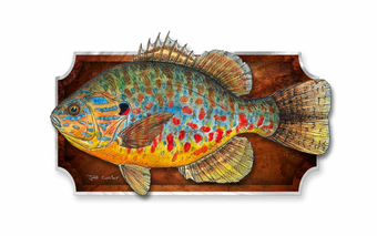 Colorful Sunfish Fish Trophy Plaque
