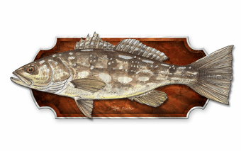 Favorite Catch Fish Wall Plaque