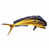 Mahi Mahi Ray Fish Art