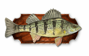 Perch Fish Wall Plaque