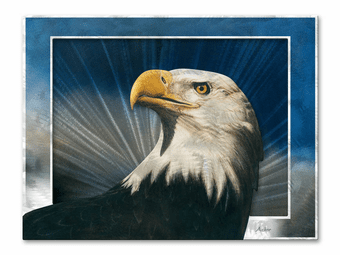 Proud Eagle Metal Wall Art