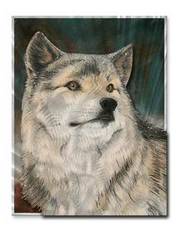 Solitary Wolf Wildlife Art