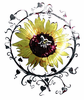 Sunflower Medallion Metal Wall Art Hanging