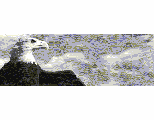 Ultrafine Silver Eagle  Fiber Base VariGrade DW Glossy 11 x 14 / 25