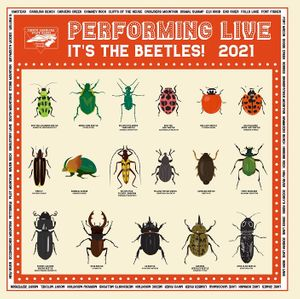 Year of the Beetle 2021