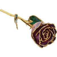 24k Yellow Gold Dipped Purple and Pink Rose