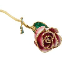 24k Yellow Gold Dipped Red and White Rose