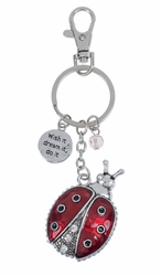 "Ganz Key Rings, Keychains - Ladybug ""Wish It, Dream It, Do It"""