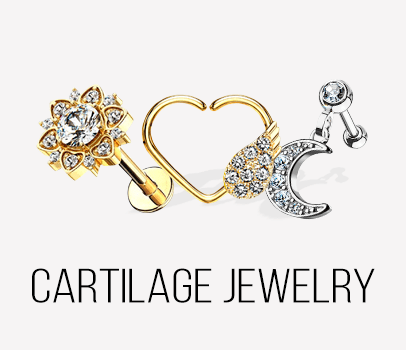 Cartilage, Daith, Tragus, Rook Earrings & more