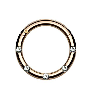 Surgical Steel Hinged Segment Hoop Rings with 5 Flush Set Front Facing Petite Crystals