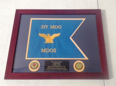 Framed USAF Guidons (Small)