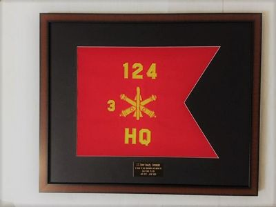 Framed Medium Size Army Guidons