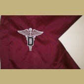 U.S. Army DENTAL CORPS Regulation Size Guidon